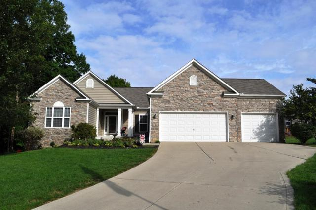 2861 Tweed Court, Lewis Center, OH 43035 (MLS #218034738) :: RE/MAX ONE