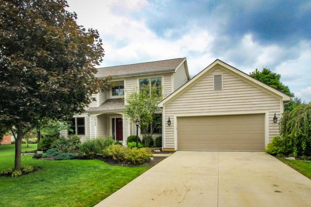 5642 Wilcox Road, Dublin, OH 43016 (MLS #218034845) :: The Raines Group