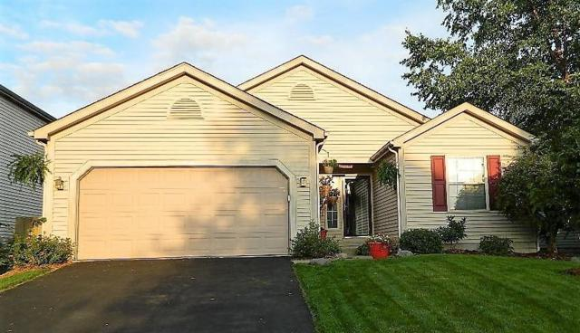 1126 Moneca Street, Blacklick, OH 43004 (MLS #218034860) :: RE/MAX ONE