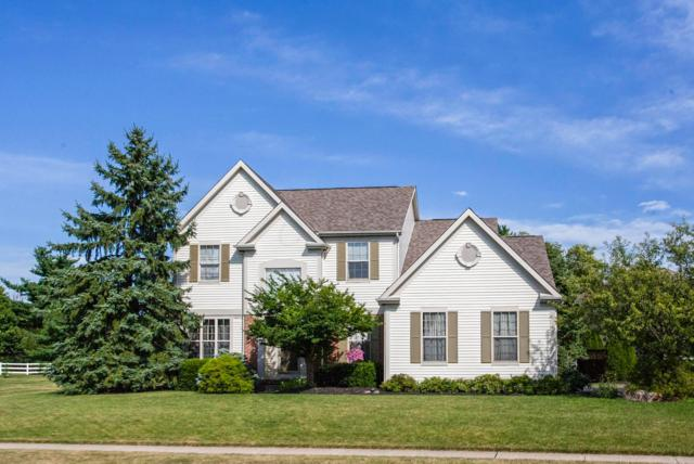 7701 Holderman Street, Lewis Center, OH 43035 (MLS #218034964) :: Julie & Company