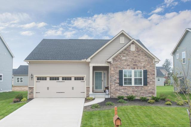 122 Ellicot Road, Delaware, OH 43015 (MLS #218034980) :: RE/MAX ONE