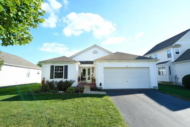 148 White Elm Drive, Delaware, OH 43015 (MLS #218035027) :: RE/MAX ONE