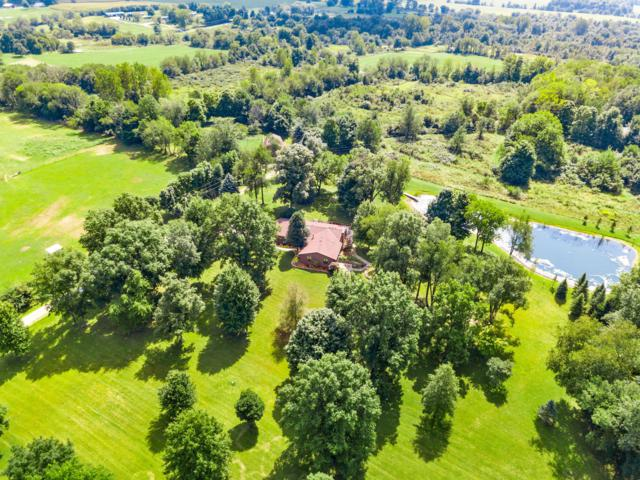 16730 Murphy Road, Sunbury, OH 43074 (MLS #218035099) :: The Clark Group @ ERA Real Solutions Realty