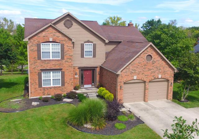 6142 Rising Sun Drive, Grove City, OH 43123 (MLS #218035349) :: RE/MAX ONE