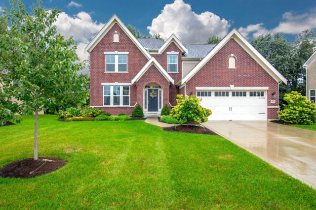 885 Little Bear Loop, Lewis Center, OH 43035 (MLS #218035356) :: RE/MAX ONE