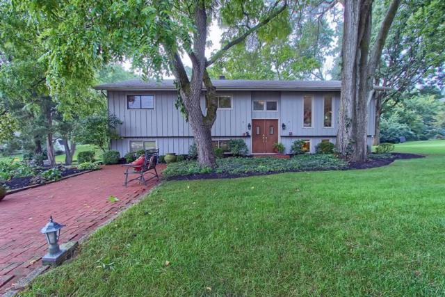 59 Grandview Drive, Dublin, OH 43017 (MLS #218035380) :: Core Ohio Realty Advisors