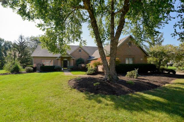 8771 Gosling Way, Powell, OH 43065 (MLS #218035443) :: The Mike Laemmle Team Realty