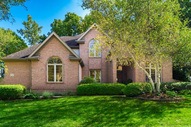 7049 Timberview Drive, Dublin, OH 43017 (MLS #218035446) :: Julie & Company