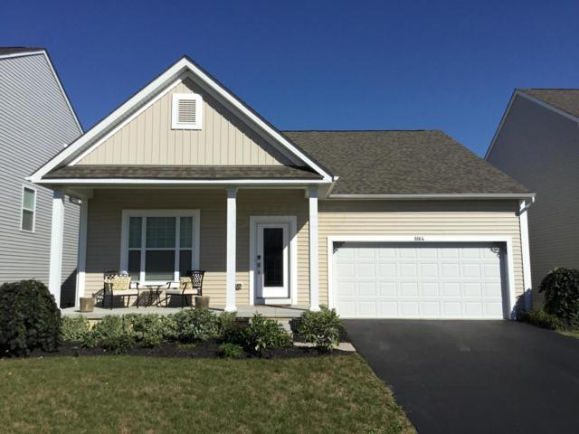 6164 Dajana Drive, Westerville, OH 43081 (MLS #218035476) :: CARLETON REALTY