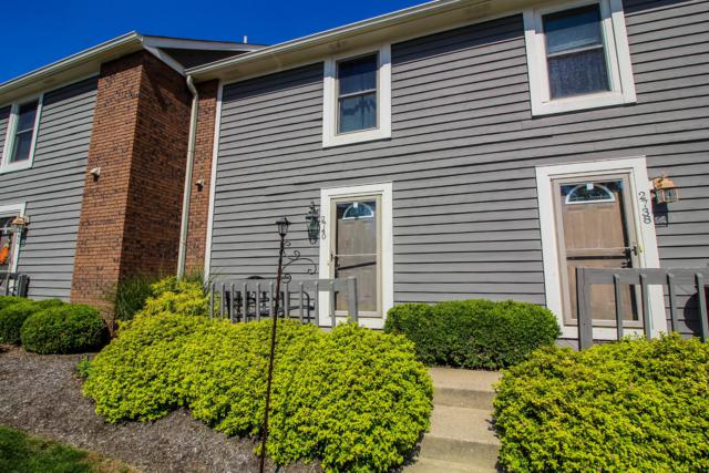 2740 Saltergate Drive, Dublin, OH 43016 (MLS #218035481) :: Julie & Company