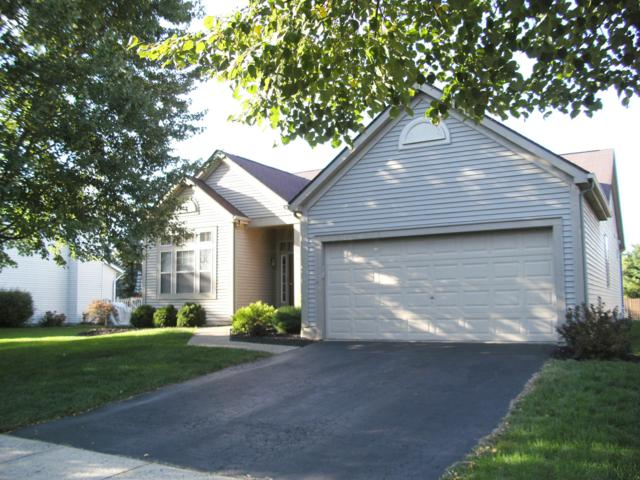 21 Barrhill Drive, Delaware, OH 43015 (MLS #218035501) :: The Mike Laemmle Team Realty