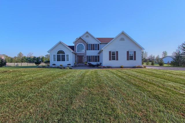 16244 Yankeetown Pike, Mount Sterling, OH 43143 (MLS #218035566) :: Julie & Company
