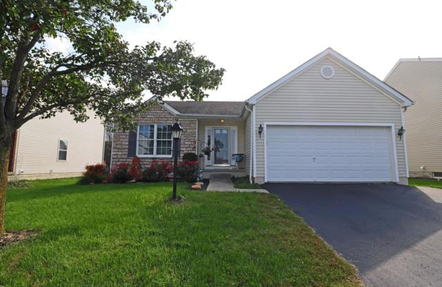 478 Flat River Street, Pickerington, OH 43147 (MLS #218035617) :: The Clark Group @ ERA Real Solutions Realty