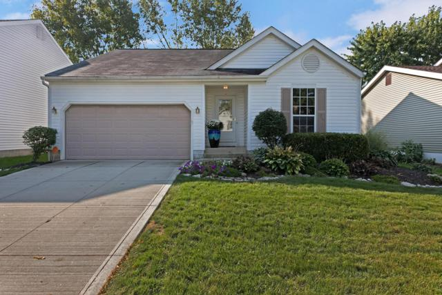 5031 Hidden View Drive, Hilliard, OH 43026 (MLS #218035761) :: The Raines Group