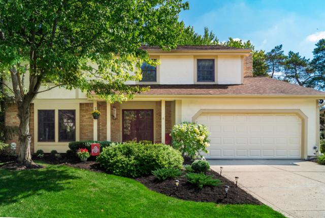 7018 Tralee Drive, Dublin, OH 43017 (MLS #218035785) :: The Mike Laemmle Team Realty
