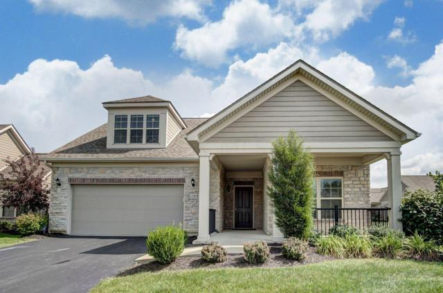 1220 Little Bear Loop, Lewis Center, OH 43035 (MLS #218035841) :: The Clark Group @ ERA Real Solutions Realty