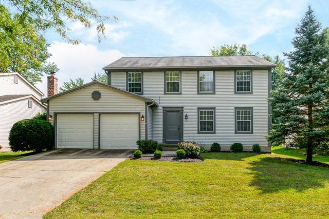 743 Suntree Drive, Westerville, OH 43081 (MLS #218035895) :: The Clark Group @ ERA Real Solutions Realty