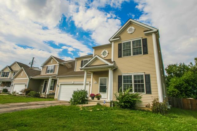 5744 Summerville Drive, Galloway, OH 43119 (MLS #218035964) :: The Raines Group