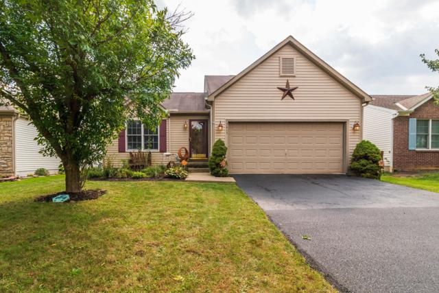 3415 Brook Spring Drive, Grove City, OH 43123 (MLS #218035976) :: Shannon Grimm & Partners