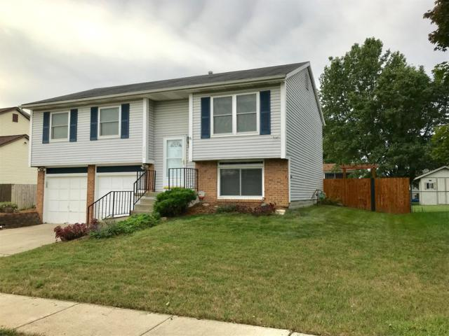 2689 Buggywhip Lane, Columbus, OH 43207 (MLS #218036060) :: The Clark Group @ ERA Real Solutions Realty