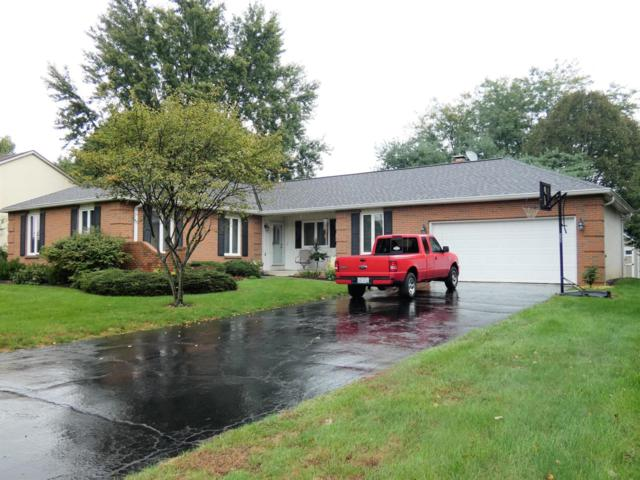 12184 Raintree Avenue, Pickerington, OH 43147 (MLS #218036184) :: RE/MAX ONE