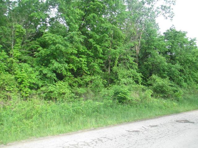 0 County Road 169, Cardington, OH 43315 (MLS #218036230) :: CARLETON REALTY