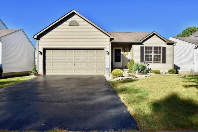 5748 Westbank Drive, Galloway, OH 43119 (MLS #218036330) :: The Raines Group