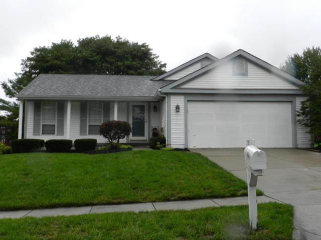 7570 Plainfield Drive, Pickerington, OH 43147 (MLS #218036355) :: Shannon Grimm & Partners