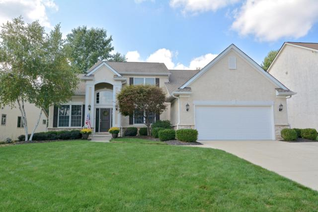 447 Bellfrey Drive, Westerville, OH 43082 (MLS #218036383) :: Shannon Grimm & Partners
