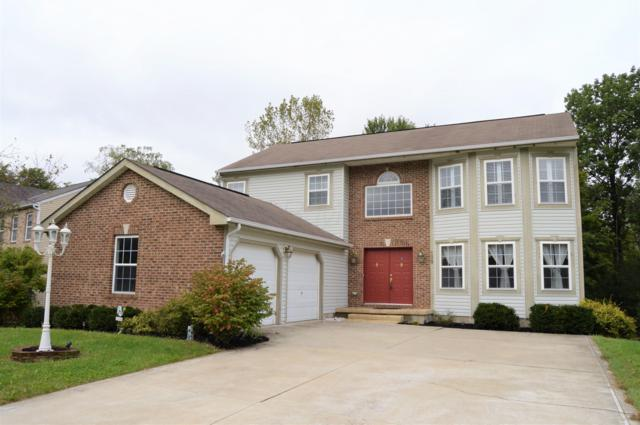 138 Long Hollow Drive, Etna, OH 43062 (MLS #218036465) :: Keller Williams Excel