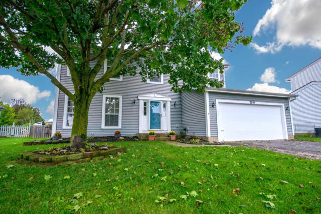 2919 Culver Drive, Hilliard, OH 43026 (MLS #218036493) :: Exp Realty