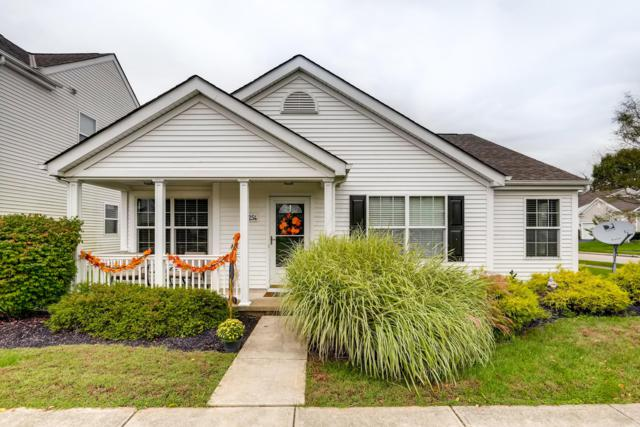 7254 Winterbek Avenue, New Albany, OH 43054 (MLS #218036611) :: RE/MAX ONE