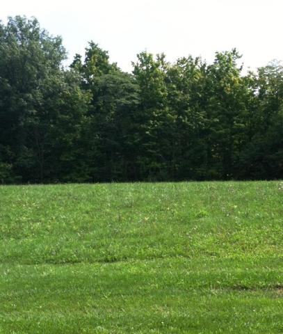 6905 Harriott Road, Powell, OH 43065 (MLS #218036693) :: The Clark Group @ ERA Real Solutions Realty