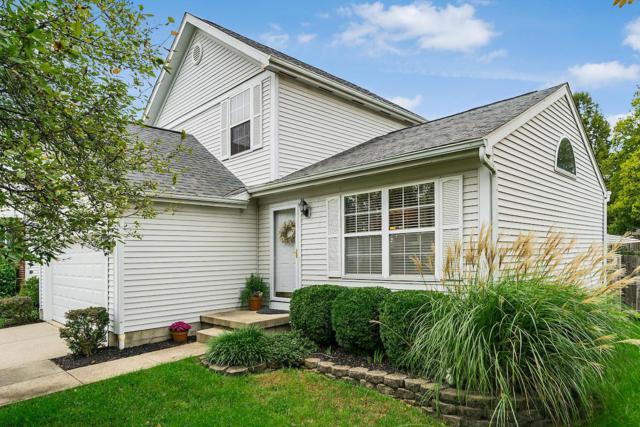 7326 Arborlee Drive, Reynoldsburg, OH 43068 (MLS #218036721) :: Shannon Grimm & Partners