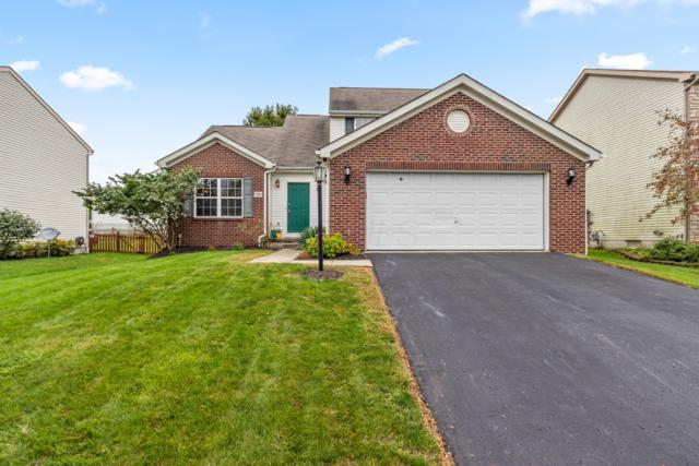 384 Streamwater Drive, Blacklick, OH 43004 (MLS #218036729) :: Exp Realty
