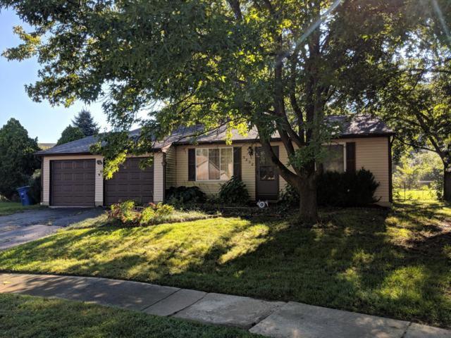 5232 Spring Beauty Court, Columbus, OH 43230 (MLS #218036754) :: Shannon Grimm & Partners