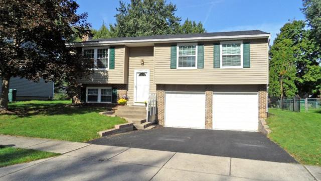 4288 Bitterroot Drive, Westerville, OH 43081 (MLS #218037060) :: RE/MAX ONE
