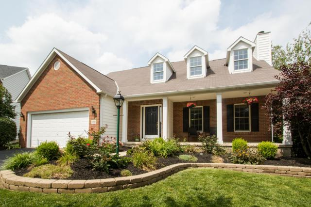 1759 Whites Court, Lewis Center, OH 43035 (MLS #218037189) :: RE/MAX ONE