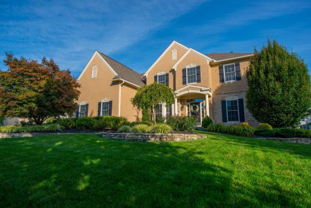 10196 Archer Lane, Dublin, OH 43017 (MLS #218037222) :: Shannon Grimm & Partners