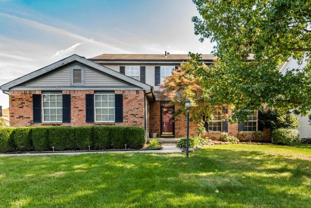 299 Willowdown Court, Columbus, OH 43235 (MLS #218037273) :: Exp Realty