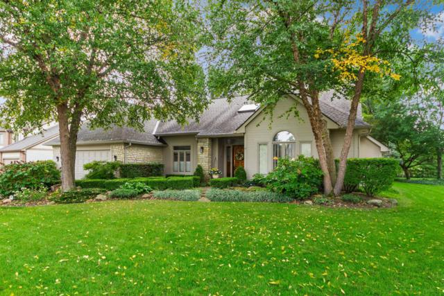 6227 Inverurie Drive W, Dublin, OH 43017 (MLS #218037479) :: CARLETON REALTY