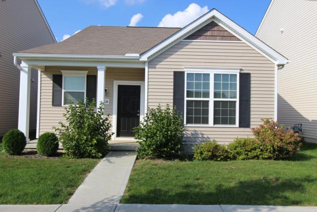 5824 Trail Creek Drive, Dublin, OH 43016 (MLS #218037560) :: Signature Real Estate