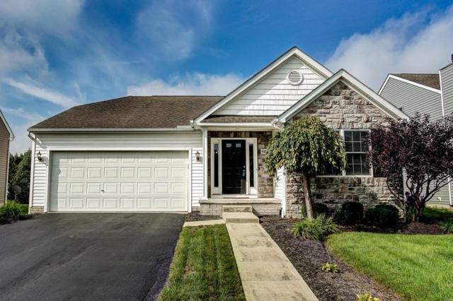 5197 Copper Creek Drive, Dublin, OH 43016 (MLS #218037579) :: Keller Williams Excel