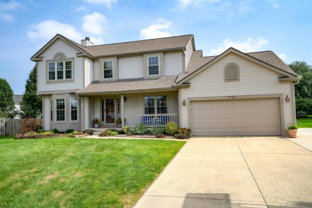 7795 Emerald Place, Lewis Center, OH 43035 (MLS #218037623) :: Exp Realty