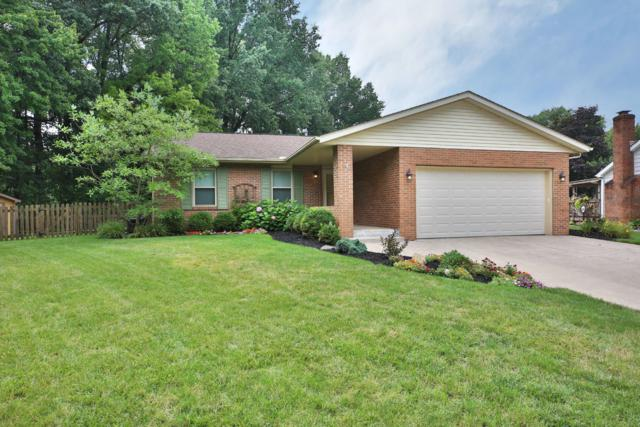 896 Windbourne Court, Columbus, OH 43230 (MLS #218037697) :: RE/MAX ONE