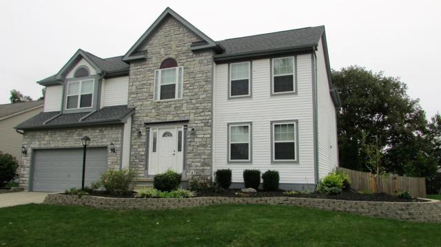 5740 Coneflower Drive, Grove City, OH 43123 (MLS #218037714) :: RE/MAX ONE