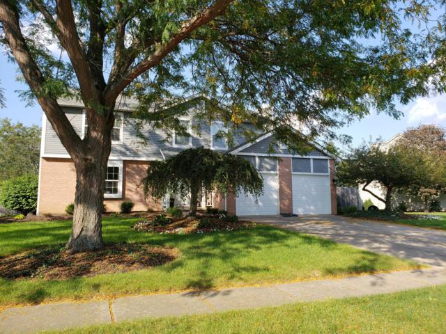 2634 Hoover Crossing Court, Grove City, OH 43123 (MLS #218037752) :: Susanne Casey & Associates