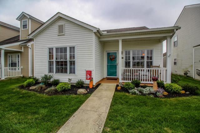 6117 Bristol Ridge Drive, Canal Winchester, OH 43110 (MLS #218037765) :: RE/MAX ONE