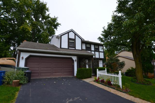 3004 Spruceview Court, Columbus, OH 43231 (MLS #218037803) :: RE/MAX ONE