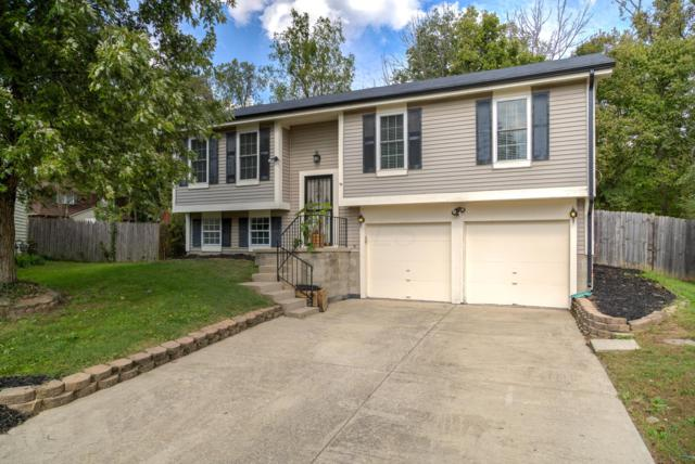 1469 Red Leaf Lane, Columbus, OH 43223 (MLS #218037820) :: Shannon Grimm & Partners